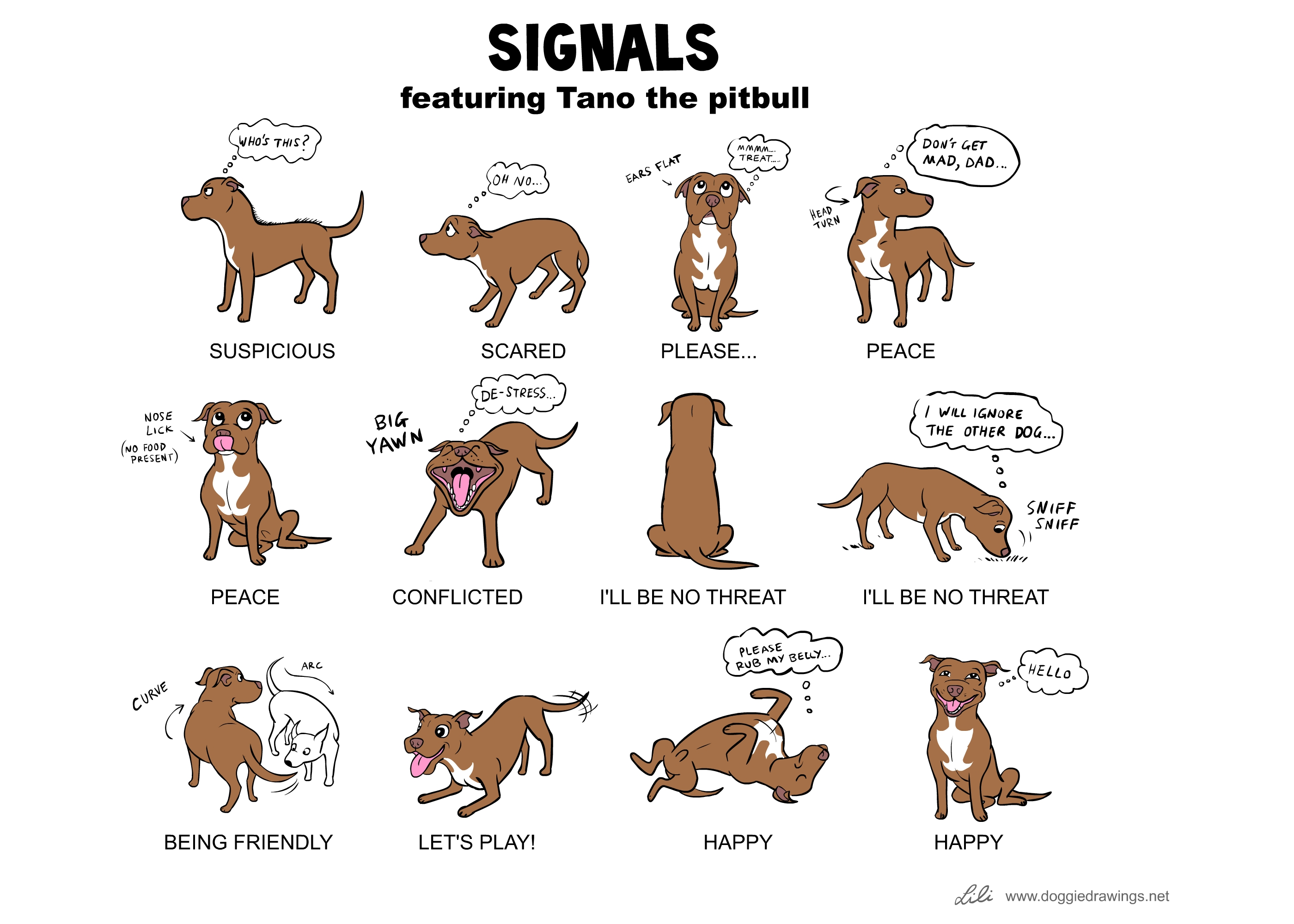 dog_body_language dog body diagram wiring diagrams schematic